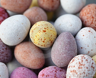 糖果涂了巧克力的鸡蛋