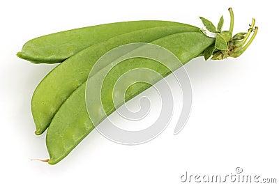 用豌豆荚怎么root_糖豌豆荚