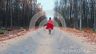 红色外套的年轻女人单独走沿在秋天森林后面视图的空的路的 旅行,自由,自然概念 股票视频