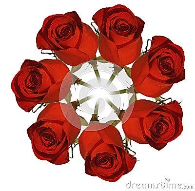 红色玫瑰花圈