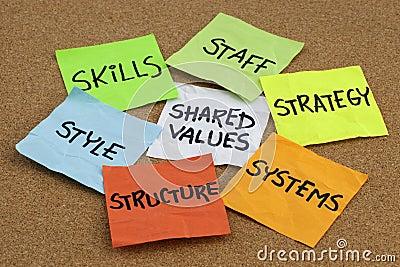 组织文化的发展