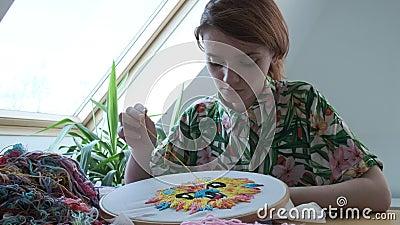 绣花圈、具有图像的织物 针工、手工艺 检疫休闲 股票录像