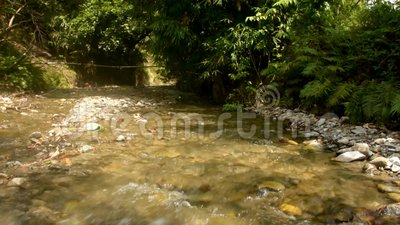 美丽和自然Kawatuna河 股票录像