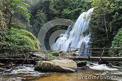去泰国免筺(Y_美丽的瀑布在北泰国 免版税库存照片 - 图片: 29953898