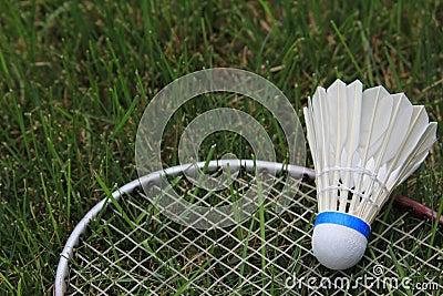 羽毛球小鸟在绿草的Shuttlecock球拍