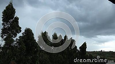 肯尼亚内罗毕的定时风暴 股票录像