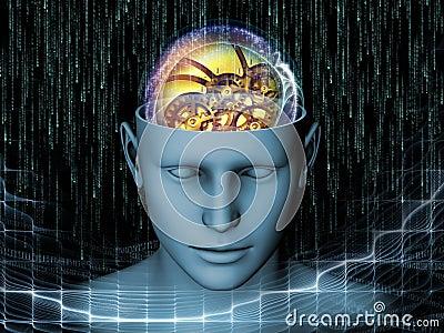 头脑的幻觉