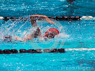 自由式游泳热