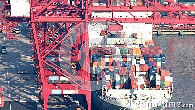货船装货的Timelapse录影在货物口岸的