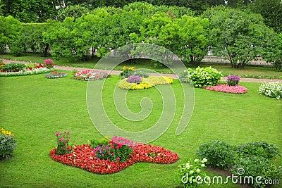 开花的五颜六色的花圃庭院.图片
