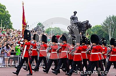 英国皇家卫兵的荣誉称号 图库摄影片