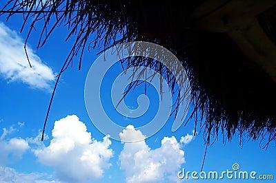 蓝色做的天空秸杆