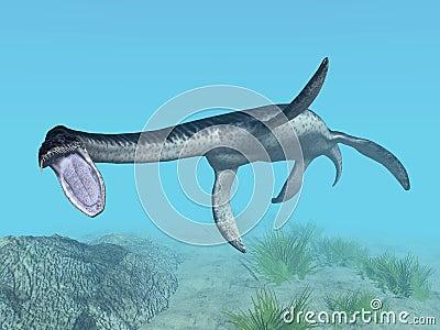 蛇颈龙图片