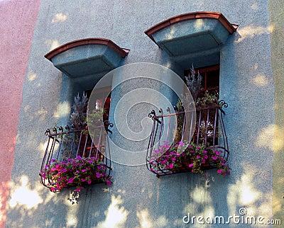 西班牙样式视窗