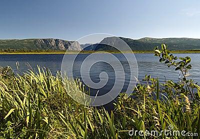 西部溪的池塘