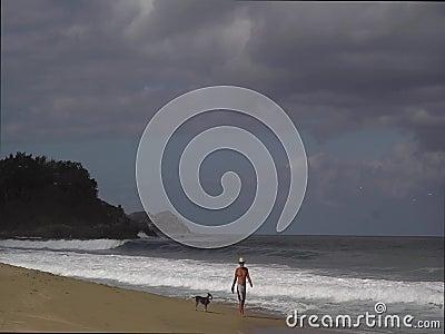 走与在海滩的狗的人 股票录像
