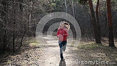运行通过秋天公园的腿特写镜头在日落 森林跑步的刺激的人连续越野  股票视频