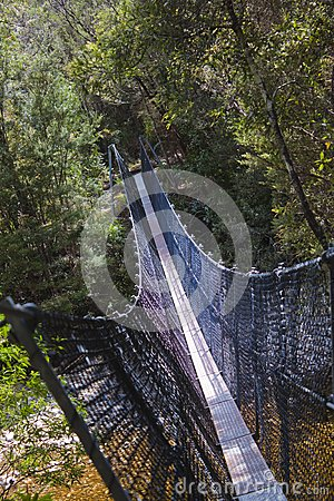 远足者在富兰克林河的吊桥