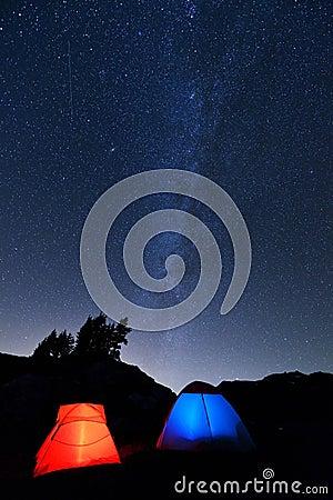 野营在黄色翠菊小山