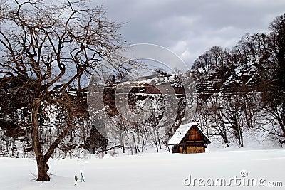 雪��/~���x+�x�&�7:d��_mr: no pr: no 0 44 0 雪村庄 id 42350427 © daika69 | dreams