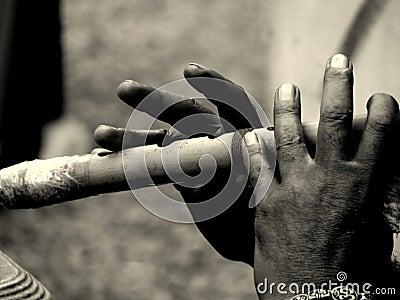 音乐的手指