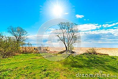 美好的风景温暖的晴天.图片