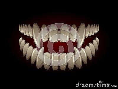 食肉动物的下颌