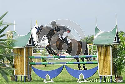骑马跳的显示 编辑类库存照片