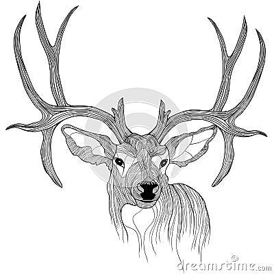 t恤杉的鹿顶头传染媒介动物例证.剪影纹身花刺设计.图片