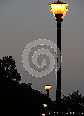 黄昏闪亮指示街道