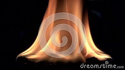 黑暗中的火焰 影视素材