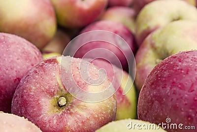 δοχείο μήλων
