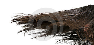 движение волос