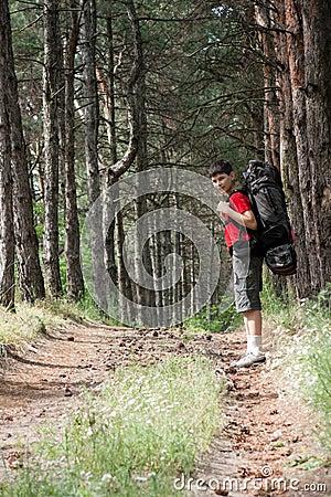 детеныши hiker
