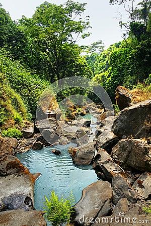 水咯吱咯吱声在热带森林里