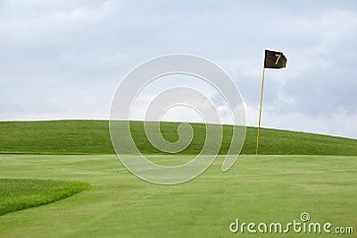 01高尔夫球绿色