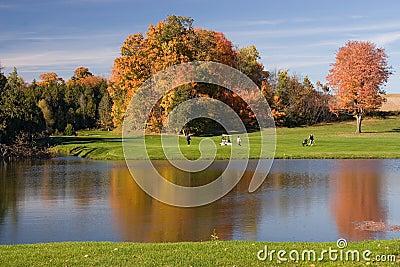 06高尔夫球视图