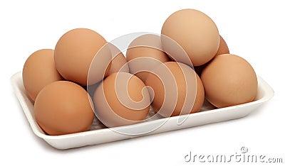 10 ovos da galinha