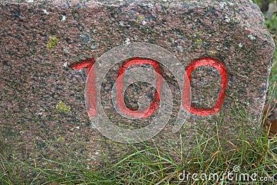 100编号