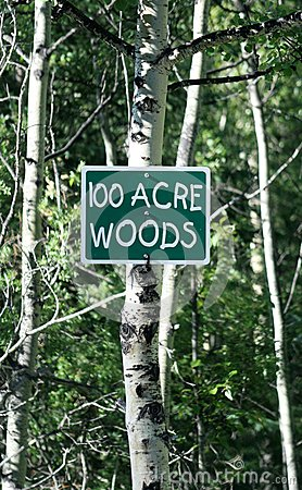 100 Acre Woods Sign