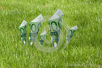 100 euro notes blooming in the grass
