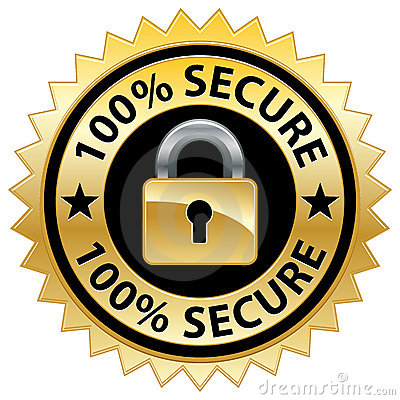 100  Secure Website Seal