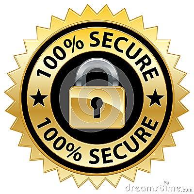 100  Secure Website Seal