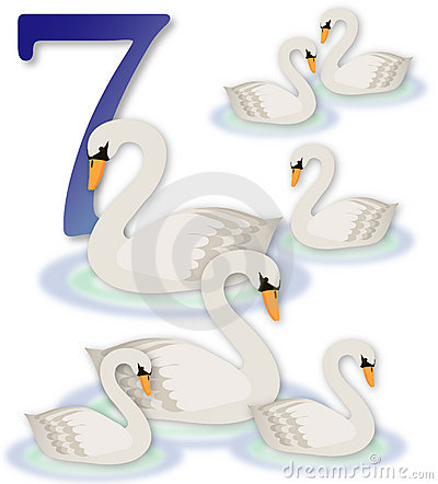 Free 12 Days Of Christmas: 7 Swans A Swimming Royalty Free Stock Photos - 368128