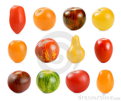 12 Verschillende Soorten Tomaten Over Wit Royalty-vrije Stock Afbeelding - Beeld: 14807686