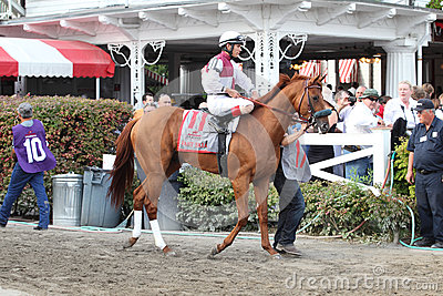 143rd Running of the Travers Stakes