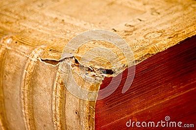 1610 antique book detail 4