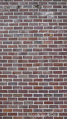 16x9 Brick Wall Background @ 10MP