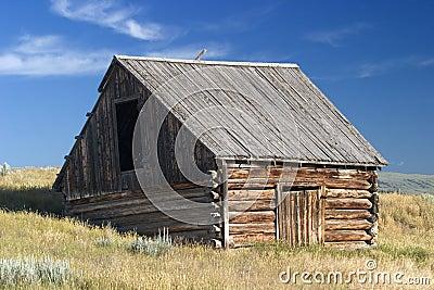 1700 s style Norwegian barn in a field in Montana