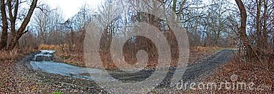 180 degree curved path in forest